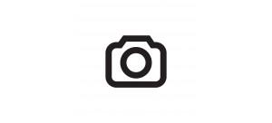 logo business insider
