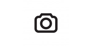 logo ara catalunya
